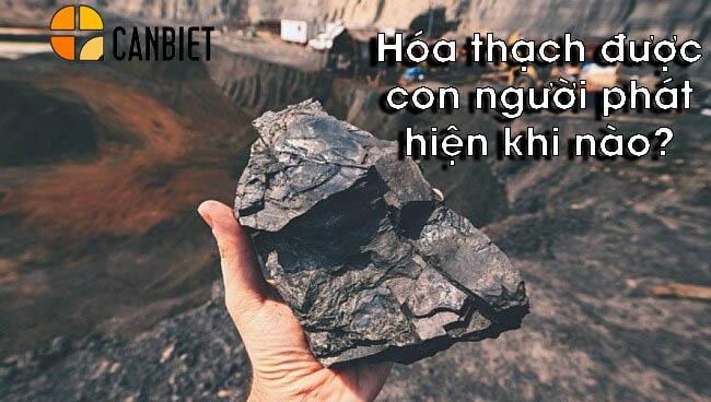 Hóa thạch được con người phát hiện khi nào?